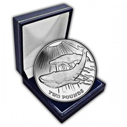 The 2013 Blue Whale Cupro Nickel Coin