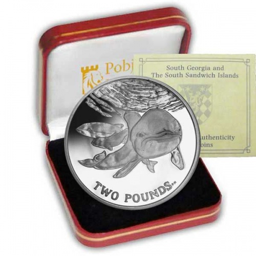 The 2014 Spectacled Porpoise Silver Coin